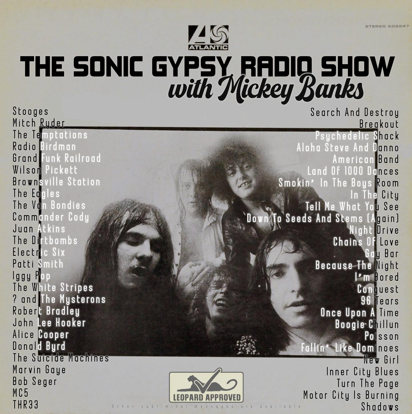Sonic Gypsy TD1